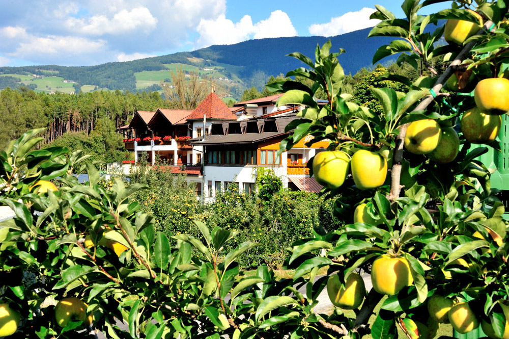 Through apple trees you have a view of the idyllic Hotel Flötscherhof.